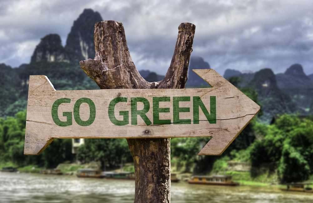 Go%20Green%20wooden%20sign%20with%20a%20forest%20background%20.jpeg