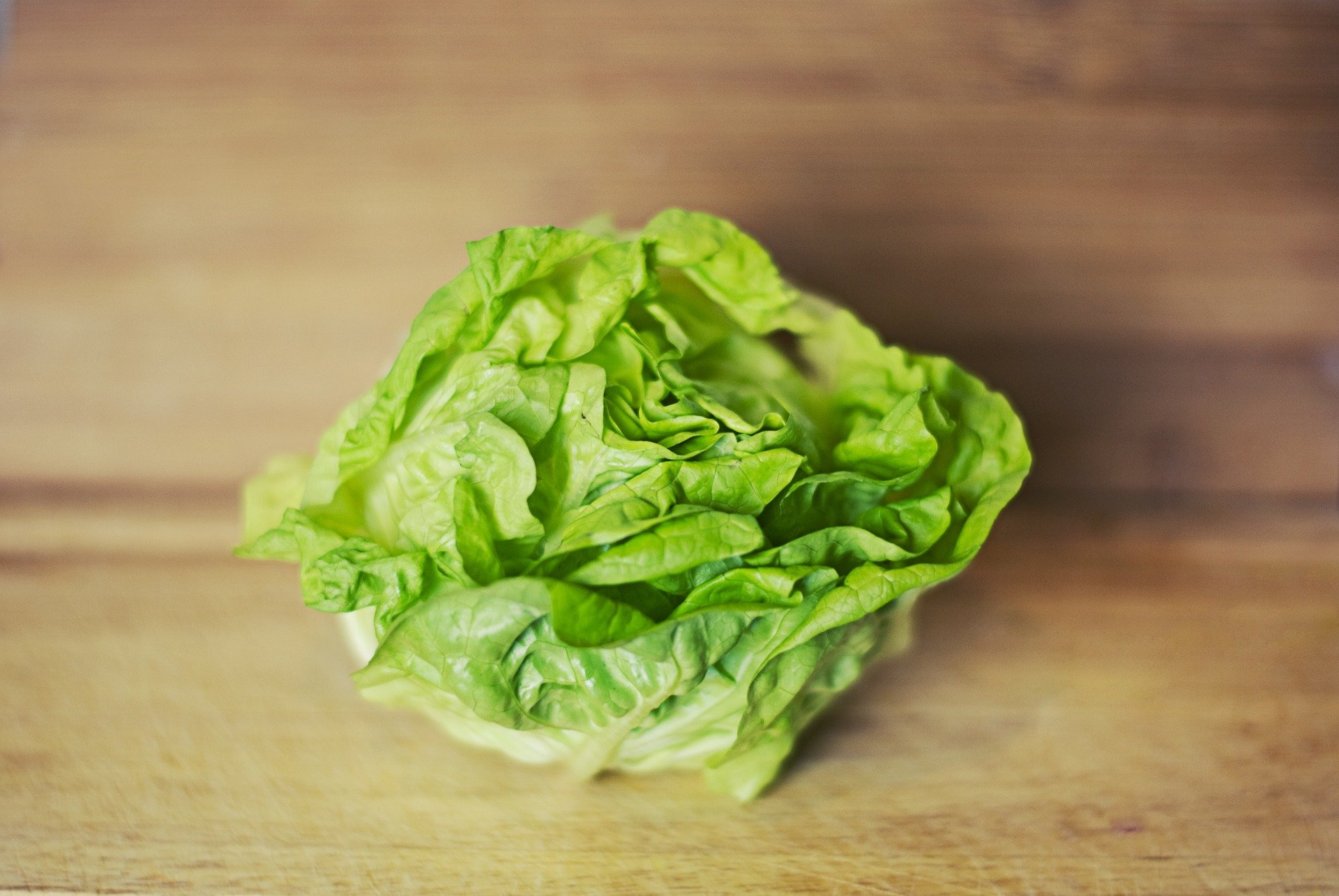 modified-atmosphere-packaging-lettuce.jpg